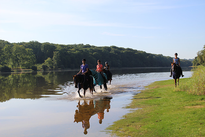 Promenade à cheval les pieds dans l'eau au bord de l'Allier