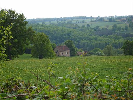 Paysage bourbonnais en Pays de Tronçais