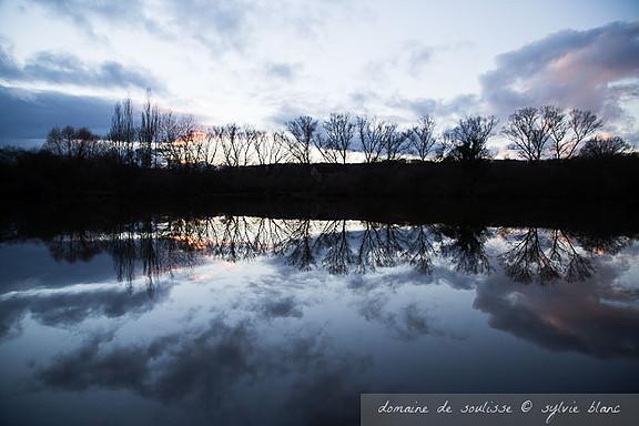 Les eaux sombres de l'étang en hiver se transforme magiquement en miroir