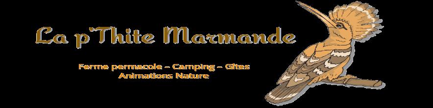 Logo de La p'Thite Marmande - ferme permacole -camping-gîtes-animations nature - huppe fasciée symbole de grande biodiversité
